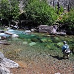 Summer Special - Guided Fly Fishing Trip