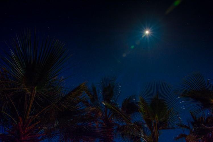 Flyfishing under the full moon