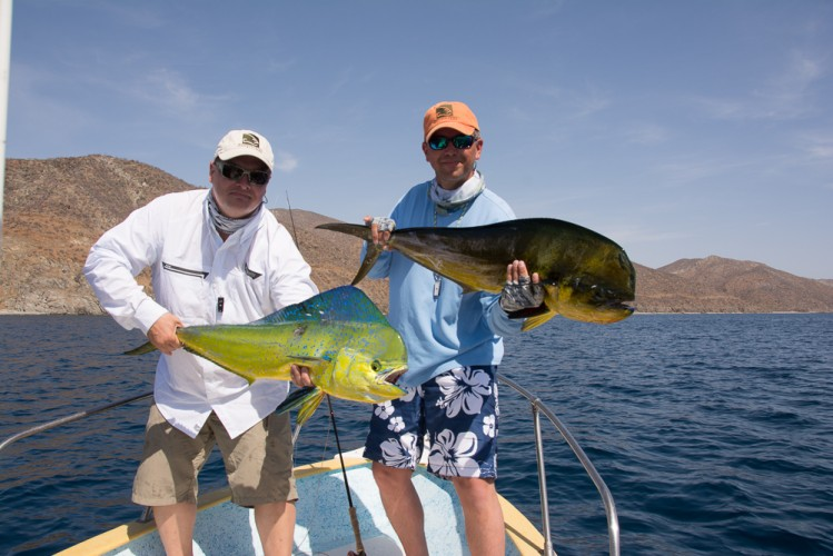 destination flyfishing for dorado