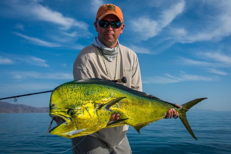 Big dorado on a destination flyfishing trip