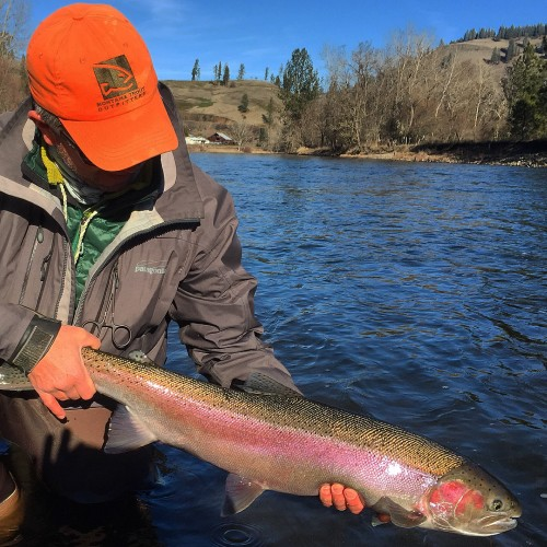 Mid winter fly fishing fix montana trout outfitters for Winter trout fishing