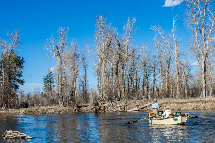 Missoula fly fishing blog page 2 of 12 montana trout for Missoula fishing report