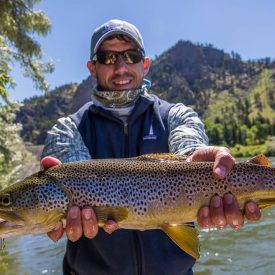 image of Montana Fishing Report for June
