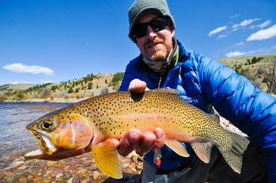 Montana Trout Outfitters-Guided Fly Fishing Trips