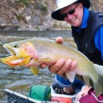 Montana Trout Outfitters