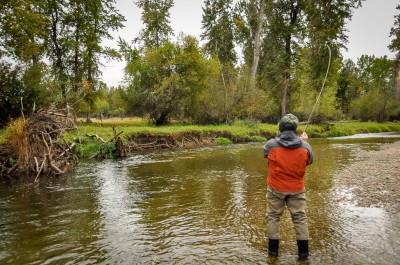Wade - Guided Trout Fishing Trips