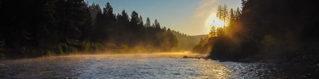 Montana Trout Fishing Resources