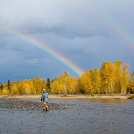 image of Missoula Fall Fly Fishing