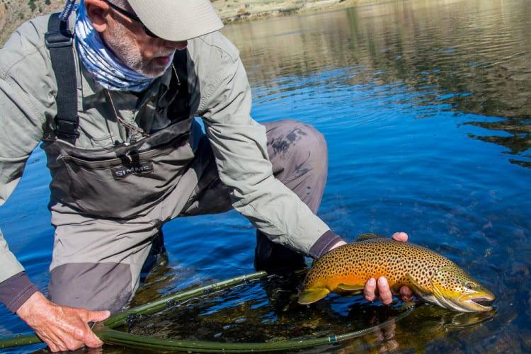2015 Fly Fishing Season