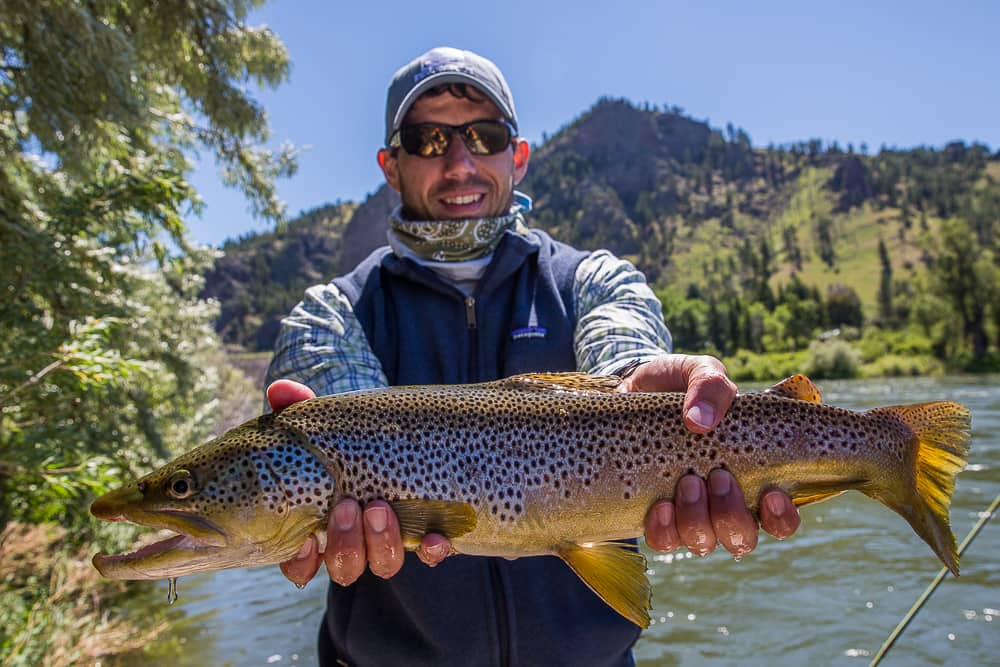 Montana Trout Outfitters | Montana Fishing Report for June
