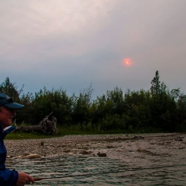 image of Smokey Bear fly fishing