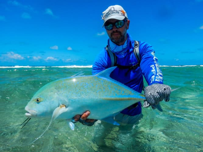 image of Bluefin Trevally