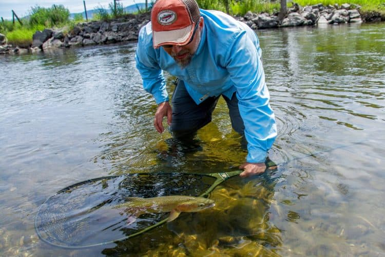 Best Guided Fly Fishing Trip