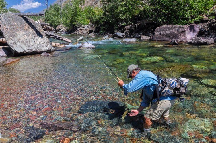 Clear Montana Blue Ribbon Trout Stream