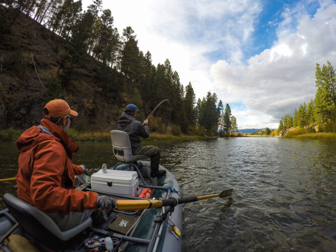 Trout on the Line - Montana Trout Fishing Adventure