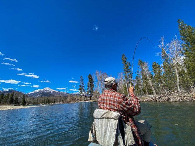 Great dry fly fishing action despite the sunshine