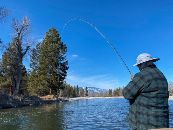 Chris with a bent rod on a gorgeous Montana day