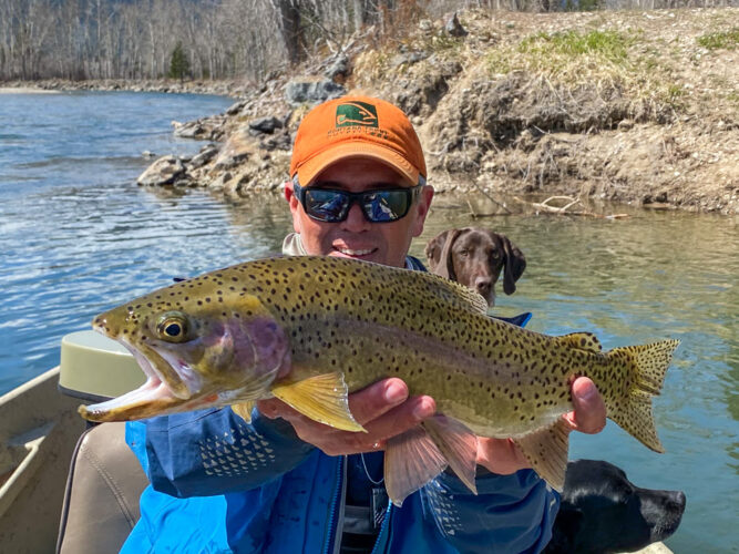 Some big fish were looking up today at our dry fly fishing