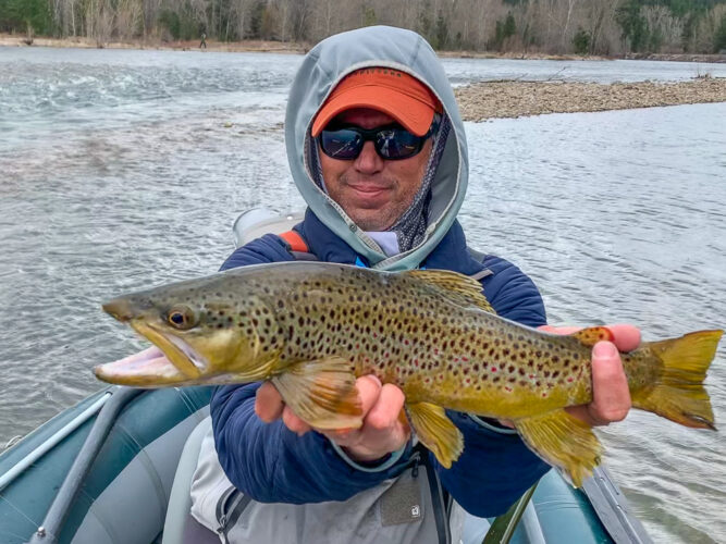 Brown Trout caught while dry fly fishing on the Bitterroot