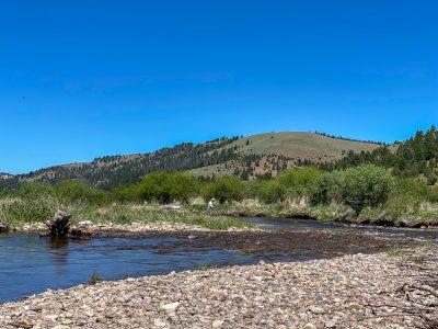 Trout Fishing Montana