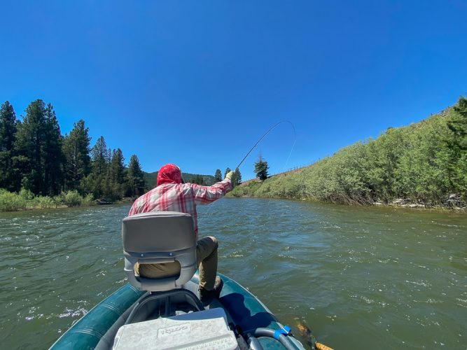 The afternoon dropper fishing kept Bob busy too - Missoula Trout Fishing