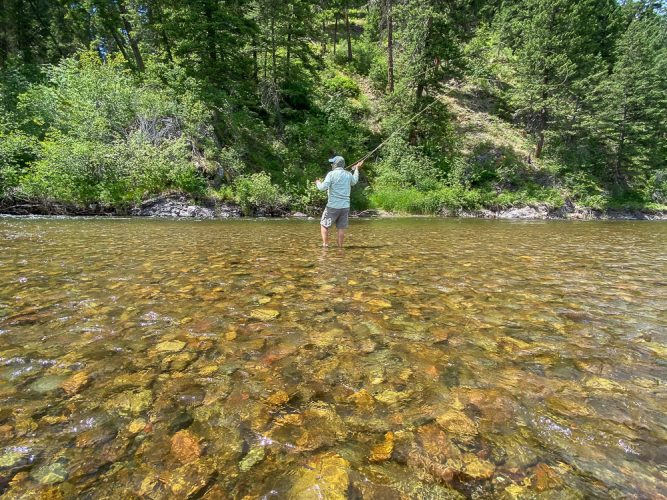 Working a nice pocket on foot - Missoula Trout Fishing