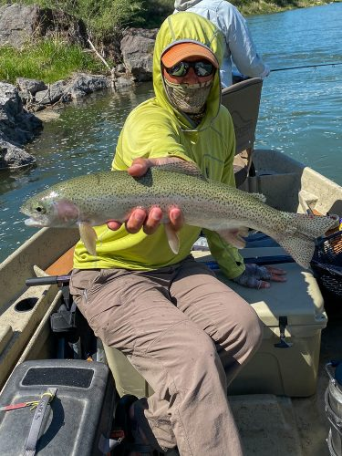 A pair of big rainbows out of foam holes for Dianne - Missouri River Rainbow Trout