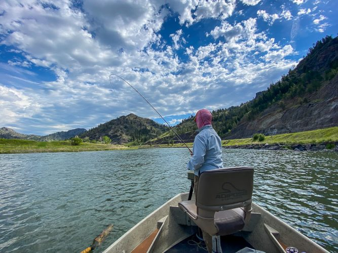 Hooked up in Big Sky country - Missouri River Rainbow Trout